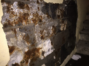 Foundation Repair Service in NJ & NY